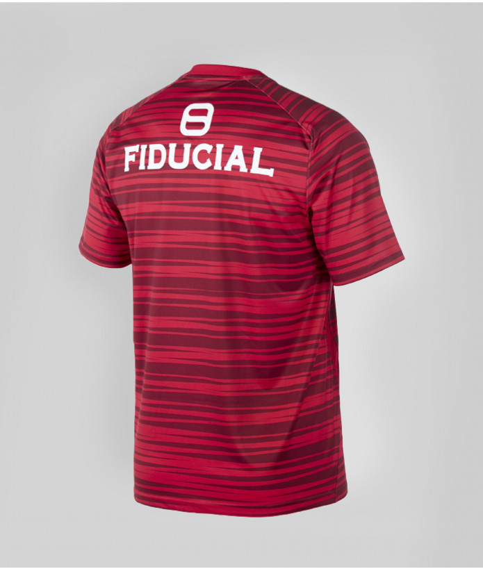 T-shirt Homme Warm Up 20/21 Stade Toulousain Rouge 2