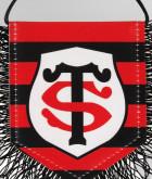 Fanion Logo Rayures Stade Toulousain 2
