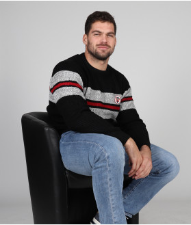 Pull Homme Col Rond Ludwig Stade Toulousain 1